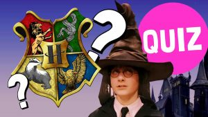Unforgivable Transgressions Of Hogwarts Test
